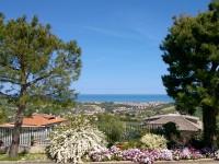 Panorama con giardino fiorito